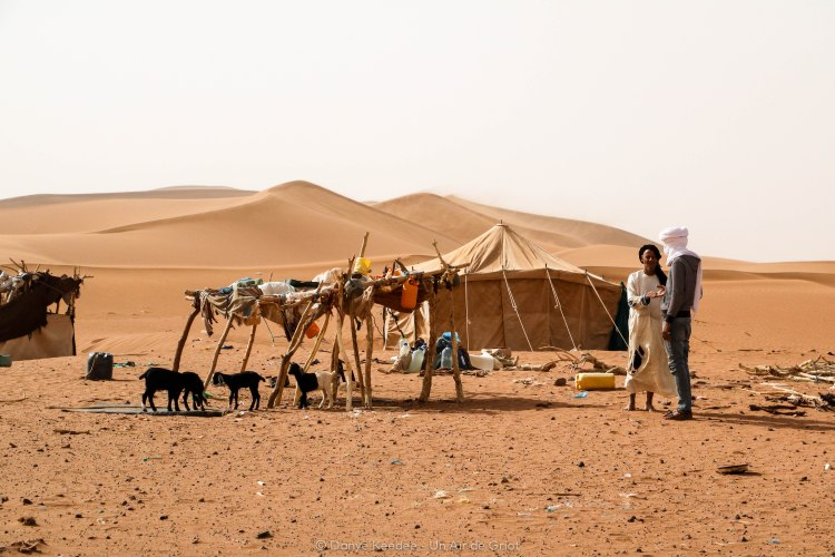 camp berbere sahara
